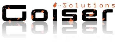 Goiser-Solutions